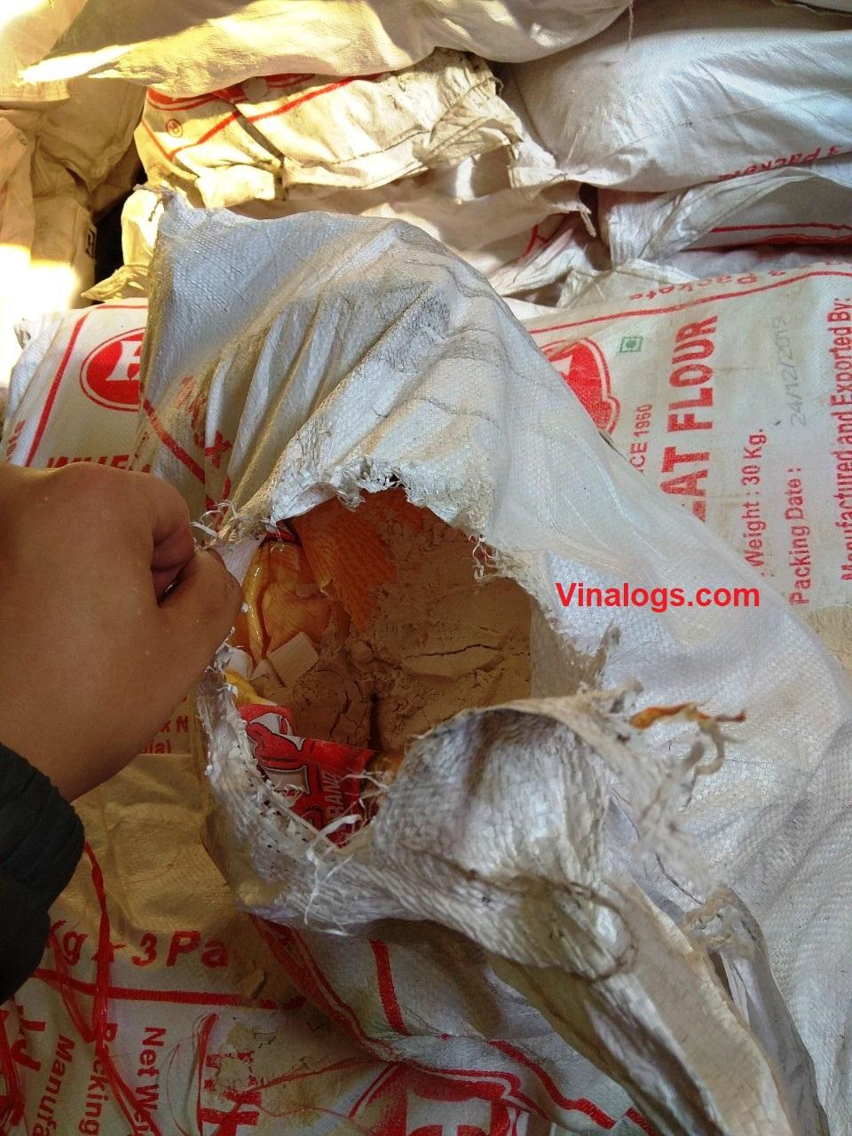 Lấy mẫu bột mì nhập khẩu