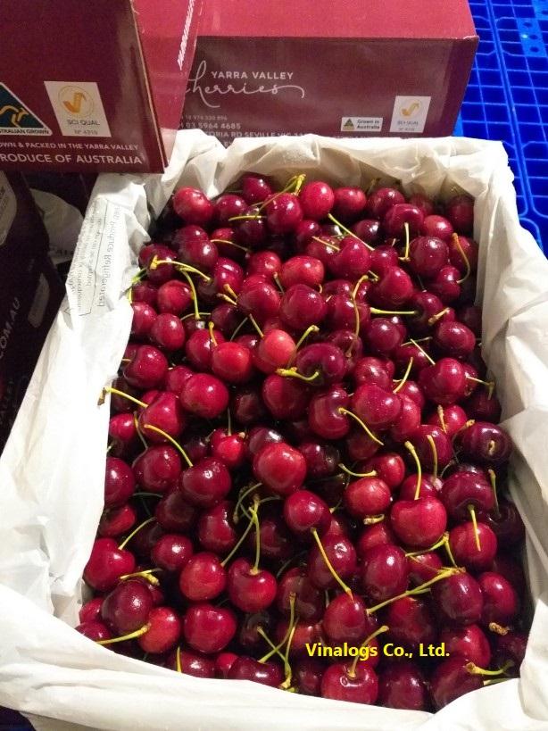 Cherry tươi nhập khẩu, màu tím đỏ